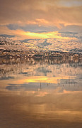 Okanagan Lake Posters - A Subtle Winter Poster by Tara Turner