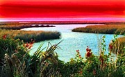 Salt Marsh Posters - A Sunset Crimsoned Poster by Julie Dant