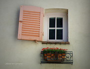 France Doors Posters - A Sweet Shuttered Window Poster by Lainie Wrightson