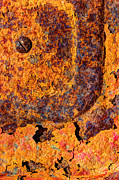 Rivet Metal Prints - A Tad Rusty Metal Print by Heidi Smith
