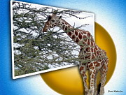Creative Manipulation Framed Prints - A Taste from the Other Side Framed Print by Sue Melvin
