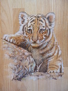 Mammals Pyrography Originals - A tiger cub  by Manon  Massari