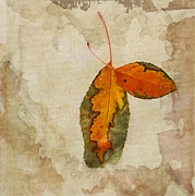 Betty LaRue - A Touch of Autumn #2