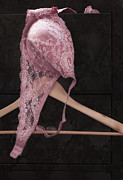 Lace Photo Prints - A Touch of Pink Print by Amy Weiss