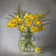 Daffodils Posters - A Touch of Spring Poster by Jacky Parker