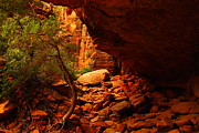 Southwestern Art Photos - A Trail In Zion by Jeff  Swan