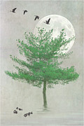 Tom York Images Prints - A Tree In The Moonlight Print by Tom York