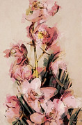 Orchids Art Print Prints - A Tribute To Orchids Print by Diane Sloan