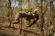 Featured Art - A U.s. Marine Participates In A Gorge by Stocktrek Images