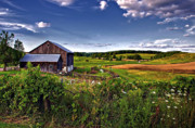 Barn Digital Art Metal Prints - A Verdant Land II Metal Print by Steve Harrington