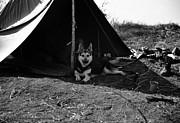 Mel Steinhauer - A Vietnam Camping Trip