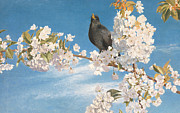 White Blossoms Paintings - A Voice of Joy and Gladness by John Samuel Raven