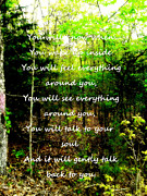 Affirmation Posters - A Walk In The Woods Poster by Marla Hoover