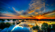 Allen Biedrzycki - A Wetland Summer Sunset