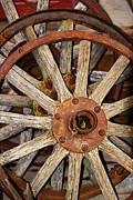 A Wheel In A Wheel Print by Phyllis Denton