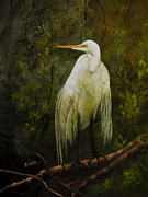 Egret Painting Originals - A whisper in the wind by Sharon Burger