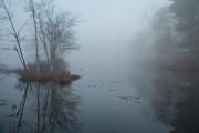 Karol  Livote - A Winters Moment