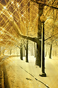 Marty Koch Photo Acrylic Prints - A Winters Night Acrylic Print by Marty Koch