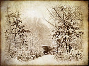 Snow . Bridge Framed Prints - A Winters Path Framed Print by Jessica Jenney
