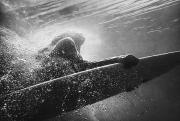 Black And White Surf Photos Posters - A Woman On A Surfboard Under The Water Poster by Ben Welsh