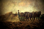 Amish Metal Prints - A Womans Work Is Never Done Metal Print by Trish Tritz