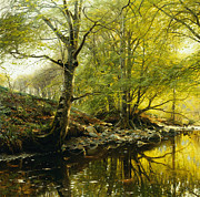 Calm Paintings - A Wooded River Landscape by Peder Monsted