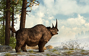 One Horned Rhino Prints - A Woolly Rhinoceros Trudges Print by Daniel Eskridge