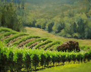 Grapevines Painting Prints - Abacela Vineyard Print by Karen Ilari