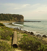 Rancho Palos Verdes Framed Prints - Abalone Cove Coastline Framed Print by Ron Regalado