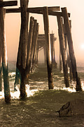 Ocean City Nj Prints - Abandon Pier thru the Fog Print by Gallery Three