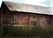 Cynthia Lassiter - Abandoned Barn