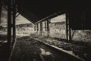 Abandoned Barn Prints - Abandoned Barn Print by James Yang