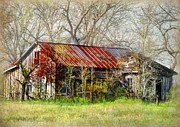 Savannah Gibbs - Abandoned Farmhouse