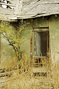Abdandoned House Photos - Abandoned Green House-001 by David Allen Pierson