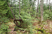New Hampshire Logging Posters - Abandoned Harp Switch Stand - New England USA Poster by Erin Paul Donovan