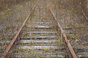 Jonathan Welch - Abandoned Railroad Tracks