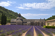 Abbaye Prints - Abbey of Senanque with lavender field Print by Bart De Rijk