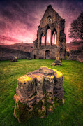 Fall Grass Posters - Abbey Ruin Poster by Adrian Evans