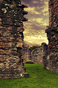 Ancient Ruins Prints - Abbey Ruins Print by Christopher and Amanda Elwell