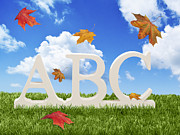 Fall Grass Framed Prints - ABC Letters With Autumn Leaves Framed Print by Christopher and Amanda Elwell