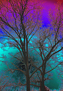 Fantasy Tree Art Print Photo Framed Prints - Aberration Framed Print by Joe Geraci