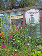 Toy Store Photo Metal Prints - ABiYOYO Metal Print by Barbara McDevitt