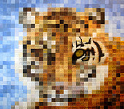 Image  Paintings - About 400 Sumatran Tigers by Charlie Baird