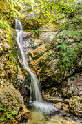 Italy Photos - Abruzzo National Park - Waterfall by Renzo Re