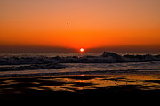 Fenwick Island Posters - Absolute Sunrise Poster by Mackenzie Fell