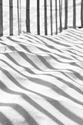 Tim Braunlin - Abstract Beach Shadows
