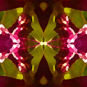 Abstract Crystal Butterfly Print by Amy Vangsgard