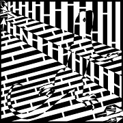 Distortion Drawings Prints - Abstract Distortion Chameleon Maze  Print by Yonatan Frimer Maze Artist