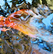 Water Paintings - Abstract Fish Art - Fairy Tail by Sharon Cummings