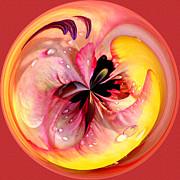Jeff McJunkin - Abstract Flower Orb IV